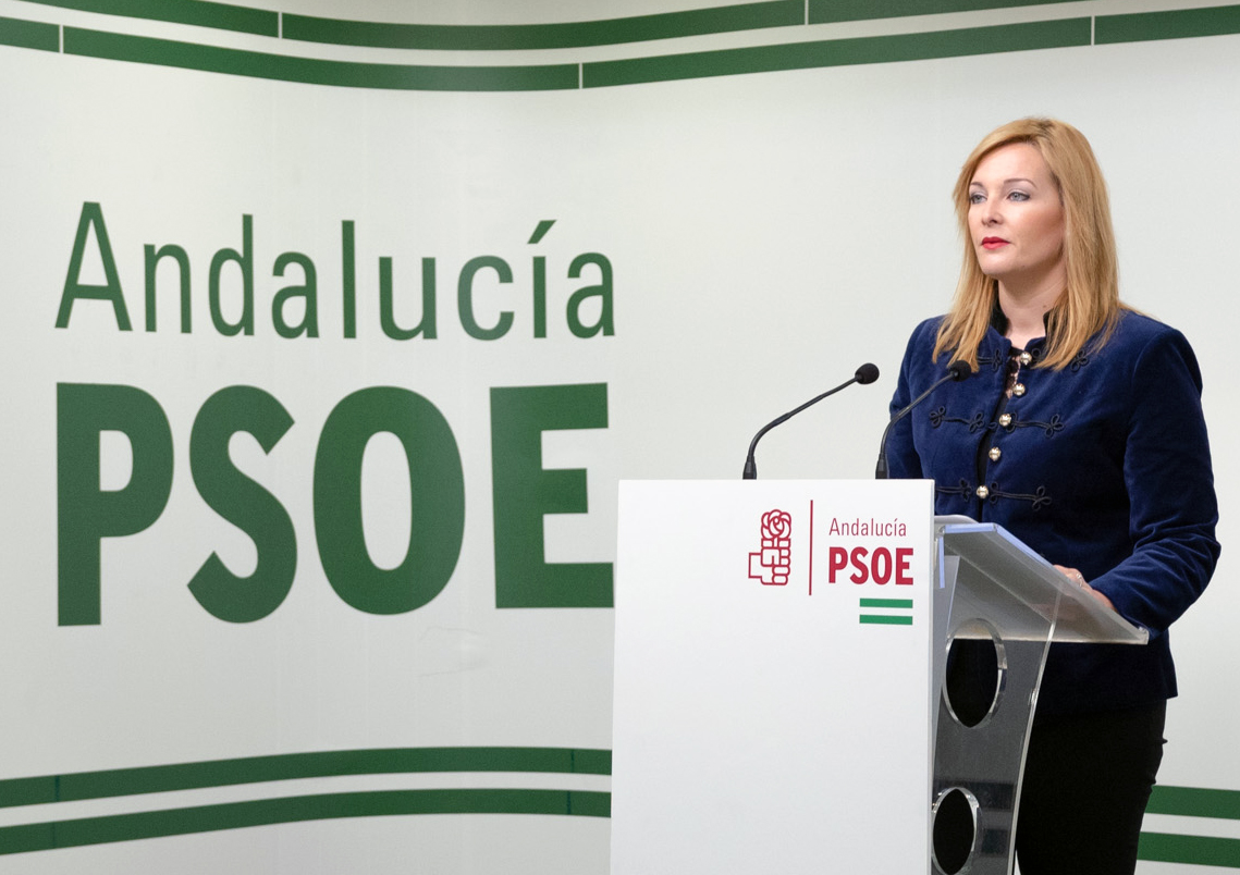 El PSOE de Adra exige al alcalde que lleve al Pleno el Presupuesto de 2019 y se someta a una cuestión de confianza