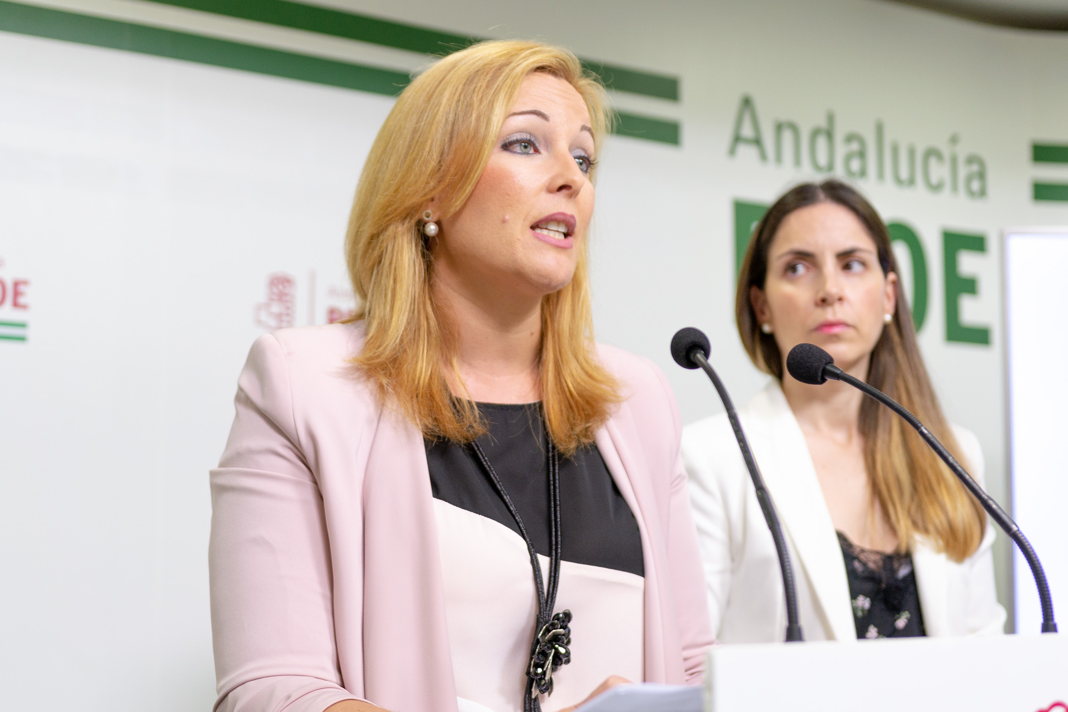 El PSOE de Adra lamenta que PP y Ciudadanos hayan aprobado un presupuesto opaco