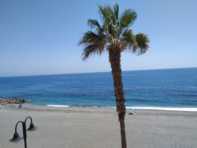 Estado de las playas de Adra del viernes 14 de agosto